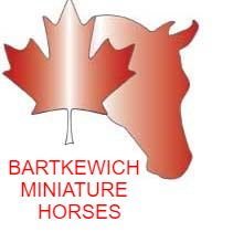 Bartkewich Miniatures